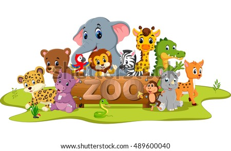 collection of zoo animals