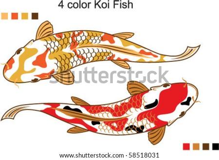 stock vector 4 color Koi