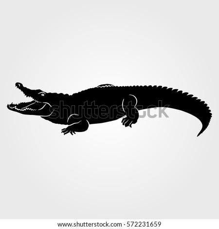 crocodile  alligator icon on...