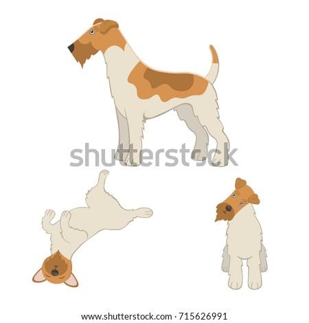 cute cartoon fox terrier