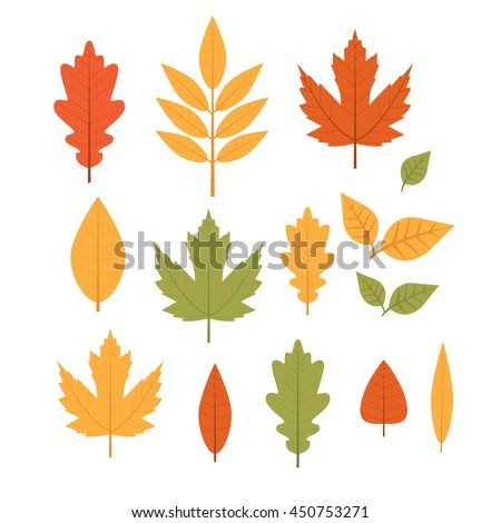 Cute vector set with yellow and orange leaves. Fall.
