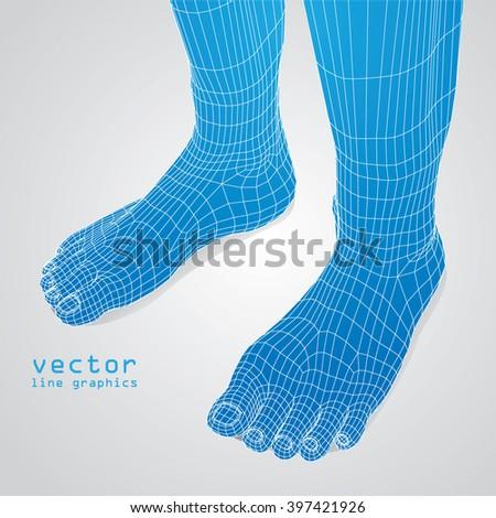 3d foot in polygon vector