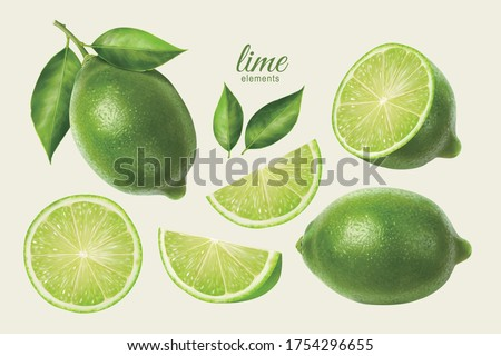 3d illustration of fresh lime set, with various view of whole lime fruit, halves and slices, isolated on light yellow background Foto d'archivio ©