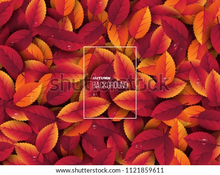 3d realistic autumn leaves with