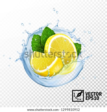 3d realistic isolated vector
