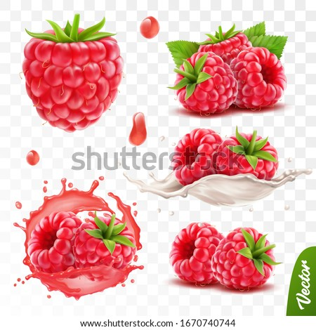 3d realistic transparent isolated vector set, whole and slice of raspberry, raspberry in a splash of juice with drops, raspberry in a splash of milk or yogurt Stock photo ©