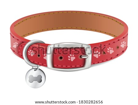 3d realistic vector dog or cat red collar with silver medal. Isolated on white background. Сток-фото ©