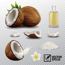 3d realistic vector set of elements (whole and half coconut, coconut chips, splash coconut milk or oil, coconut flower, oil bottle)