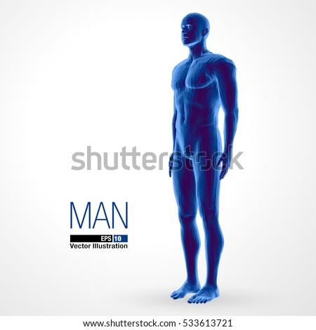 3d standing man, full length, blue colored. Polygonal vector illustration