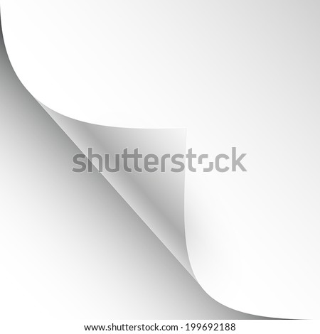 3D vector blank sheet of paper with page curl and shadow
