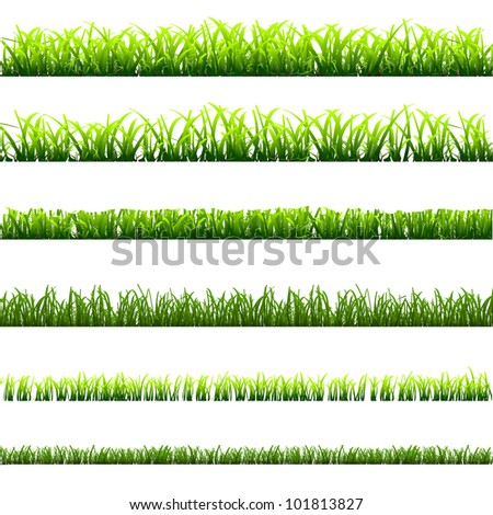 6 different types of green grass for design.Vector eps10