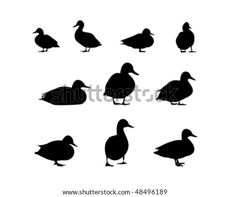 stock-vector--duck-silhouette