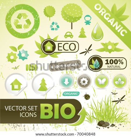 25 Eco Design Elements And Icons,  Vector Illustration