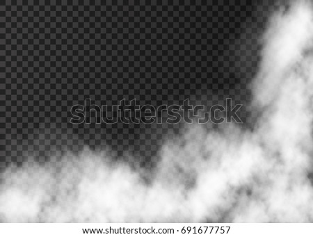 Fire smoke  or mist texture. White  realistic  vector fog isolated on transparent background.  Steam special effect.