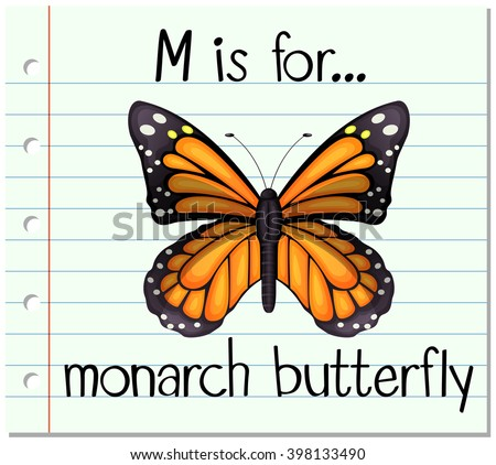 flashcard letter m is for