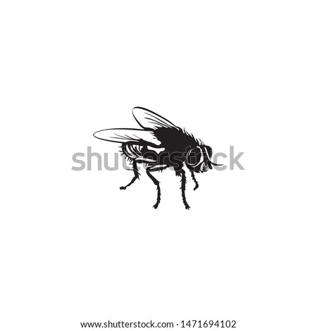flies icon silhouette vector illustration