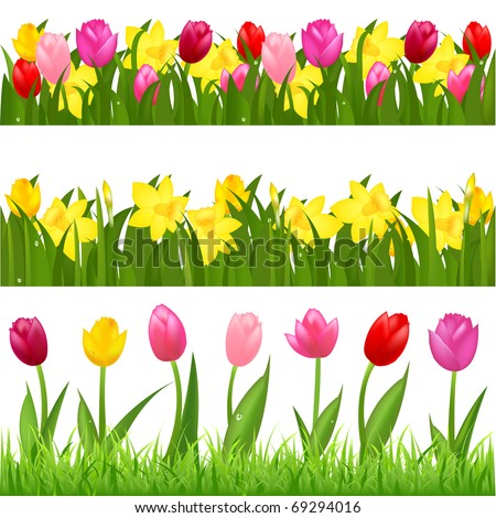 3 flower borders from tulips
