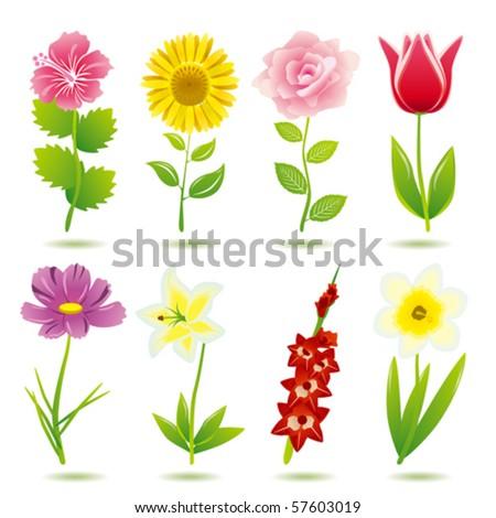 flower icons set  Illustration vector  - stock vectorReal Flower Icons