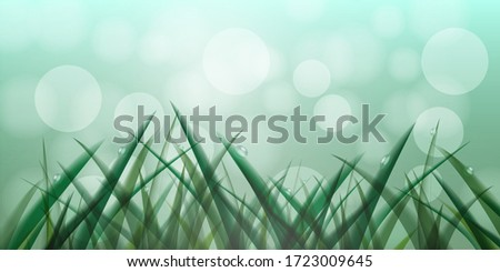 fresh grass in droplets of