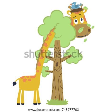 funny animals cartoon vector