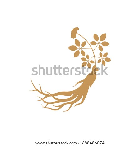 Ginseng logo design vector template. Ginseng root on white background Stock foto ©