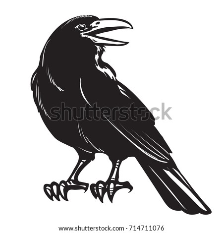 graphic black and white crow