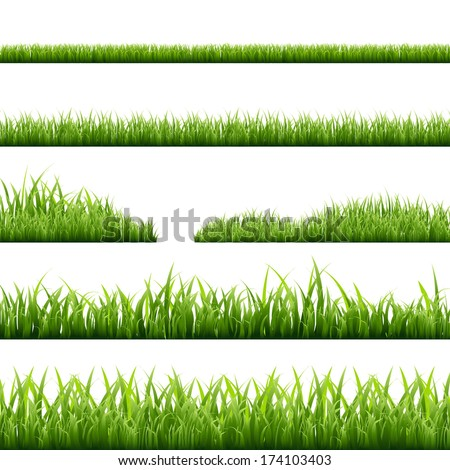 6 grass borders  vector