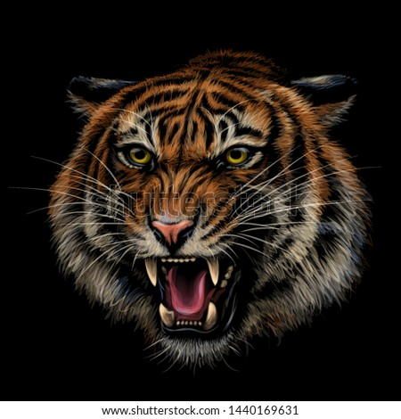 growling tiger color  hand