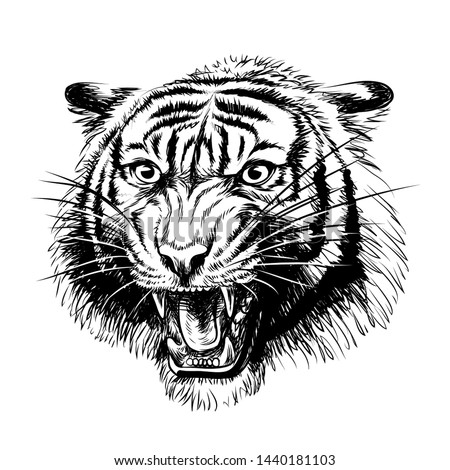 growling tiger graphic  hand