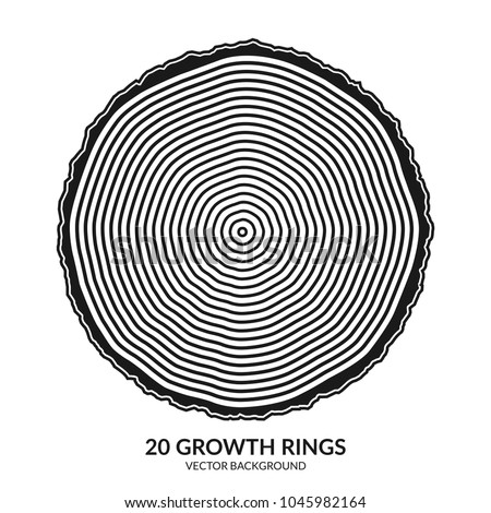 20 growth rings. Tree rings and saw cut tree trunk. Can be used as 20th anniversary concept. Vector illustration