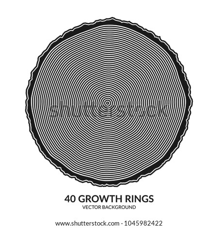 40 growth rings. Tree rings and saw cut tree trunk. Can be used as 40th anniversary concept. Vector illustration