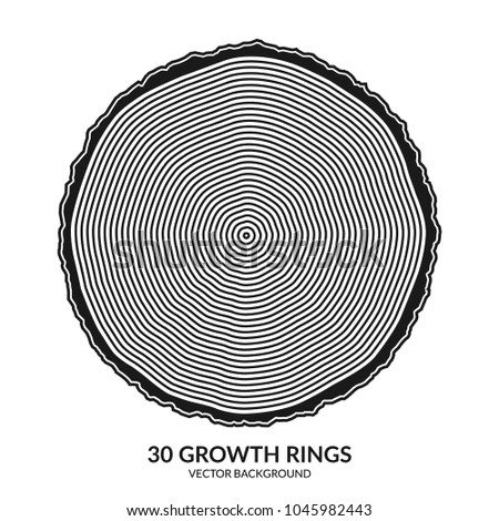 30 growth rings. Tree rings and saw cut tree trunk. Can be used as 30th anniversary concept. Vector illustration