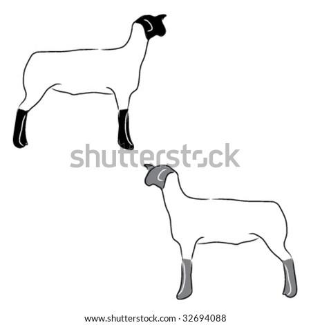 stock vector   4h or ffa sheep