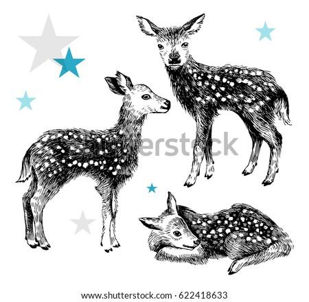 3 hand drawn baby deers in