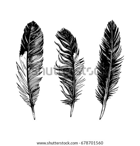3 hand drawn black and white