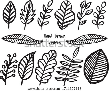 12 hand drawn leaves isolated
