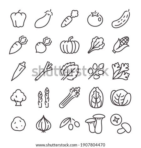 25 Icon set No.05 (vegetables)