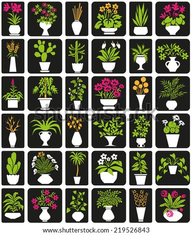 icons on black background theme houseplants and flowers