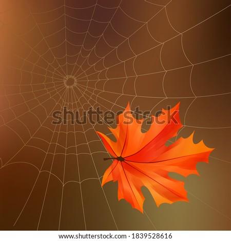 illustration of an autumn