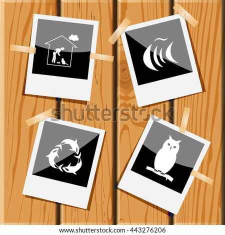 Stock Photo 4 images: home cat, fish, killer whale as recycling symbol, owl. Animal set. Photo frames on wooden desk. Vector icons.