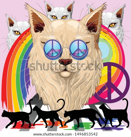 'imagine' cat rainbow peace and