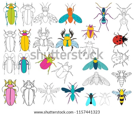 insect book coloring, set