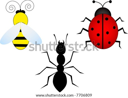 3 insects-bees,ladybug,ant-vector - stock vector