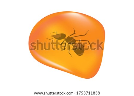 Insects in a drop of amber isolated on white background. Ancient amber midge inclusion. Piece of amber with a ant inside. Stone with a prehistoric insect. Fossilised tree resin. Stock vector Stockfoto ©