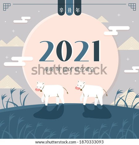 2021 Korean New Year's Day illustration. Celebrating the year of the white cow (Chinese translation: New Year)