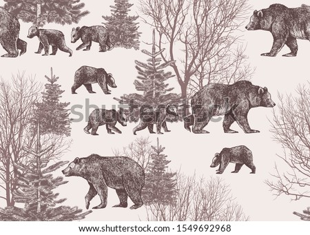 landscape with bears  cubs