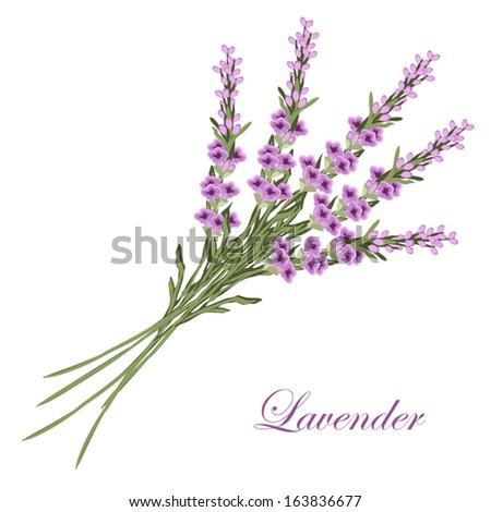 lavender bouquet in retro