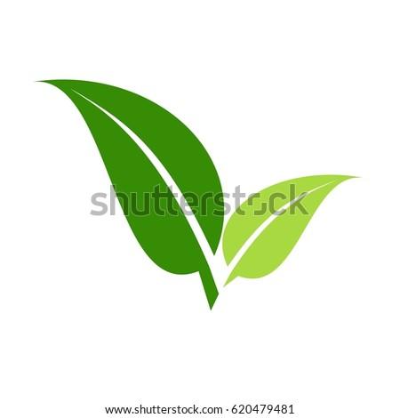 2 leaves green logo  vector