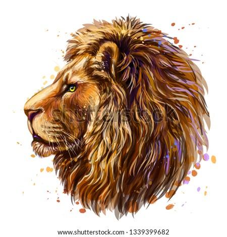 lion artistic  color profile