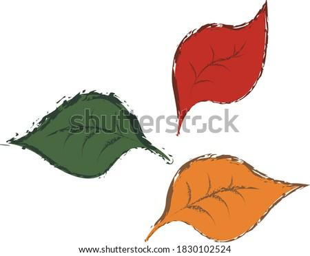 3 multicolor fallen autumn
